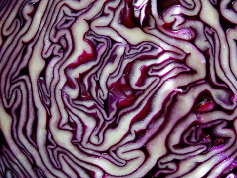 The Unbelievable Benefits of Red Cabbage