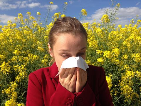 How To Stop Allergies – Naturally