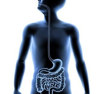 Researchers Use a Bacteria to Fight Itself to Help Stop Stomach Problems