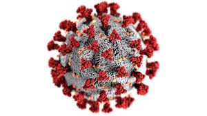 A Common Misconception about Coronavirus Explained