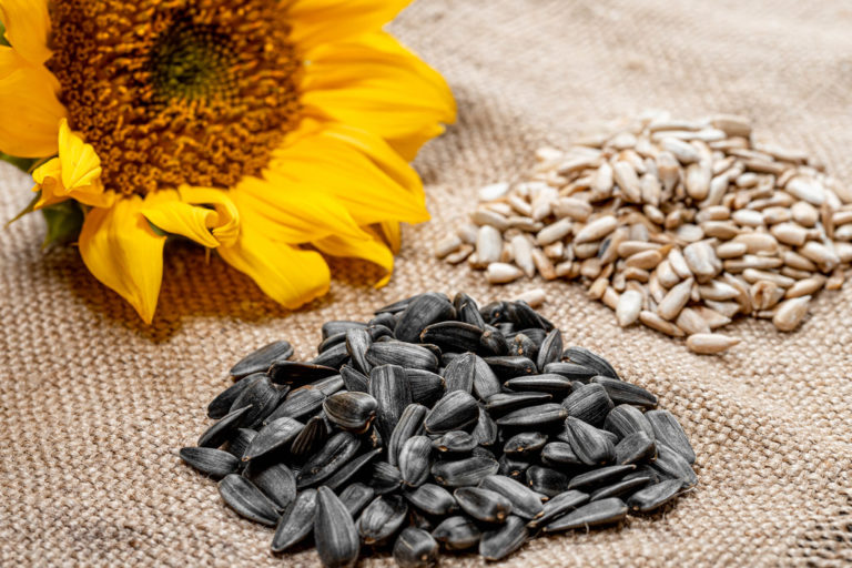 A Cool Way to Use Sunflower Seeds For Brain Health!
